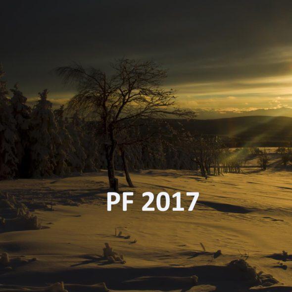 pf2017_acefoto_ikon