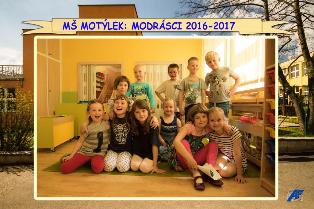 msm_modrasci_str7_05-2017_web